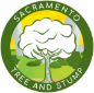 Sacramento Tree and Stump