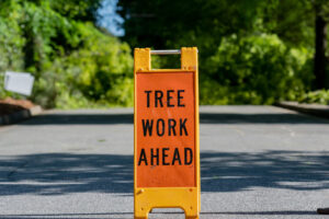 "Image of a bright orange sign placed in the middle of the road that says ""TREE WORK AHEAD""."